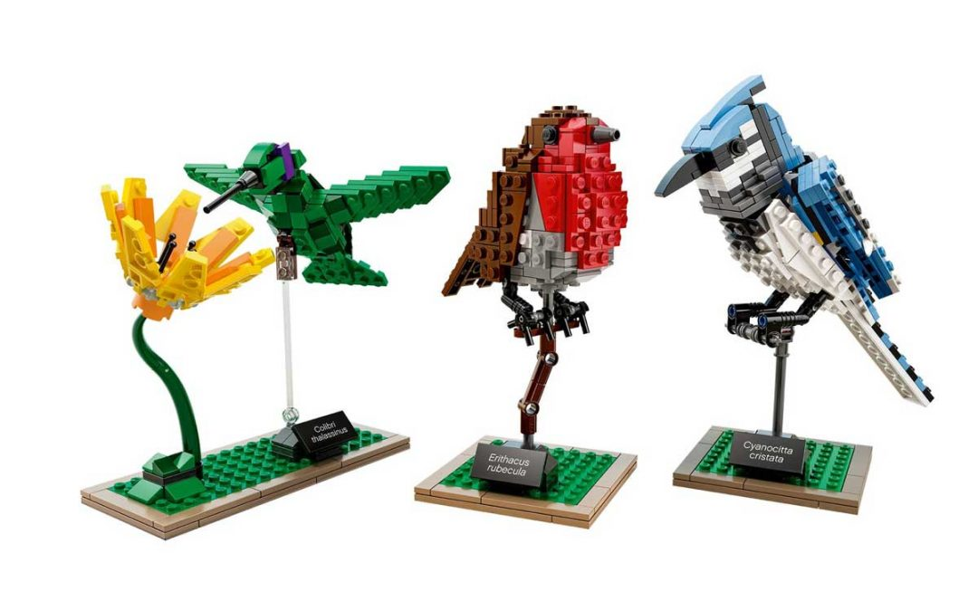 LEGO Ideas: Birds – 21301